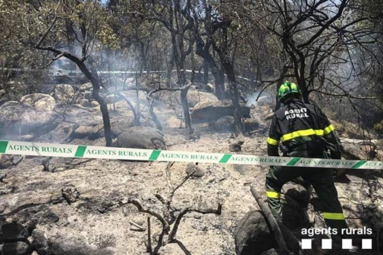 S'aprova una nova taxa per prevenir incendis forestals