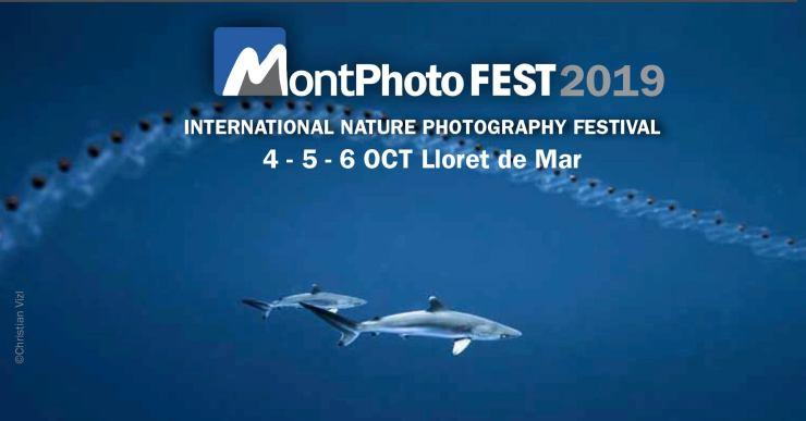 La 23a edició del festival MontPhoto se celebrarà el primer cap de setmana d'octubre