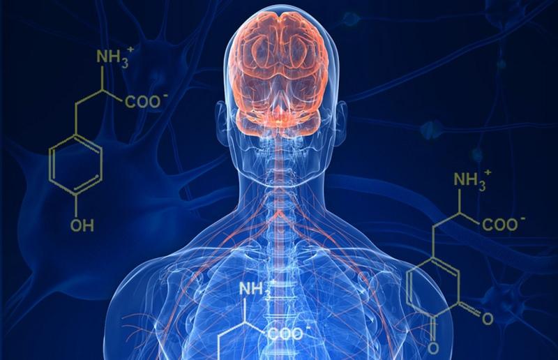 Donar a conèixer el Parkinson i les activitats pal·liatives