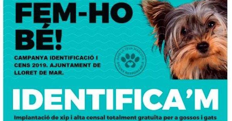 Comença la campanya 'Fem-ho bé' per regular la tinença dels animals de companyia