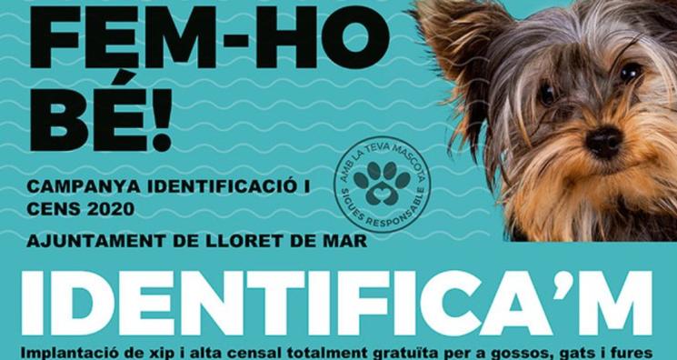 campanya identificacio mascotes