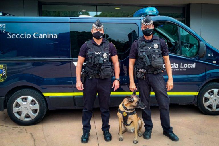 S'incorporen oficialment quatre gossos a la Unitat Canina de la policia