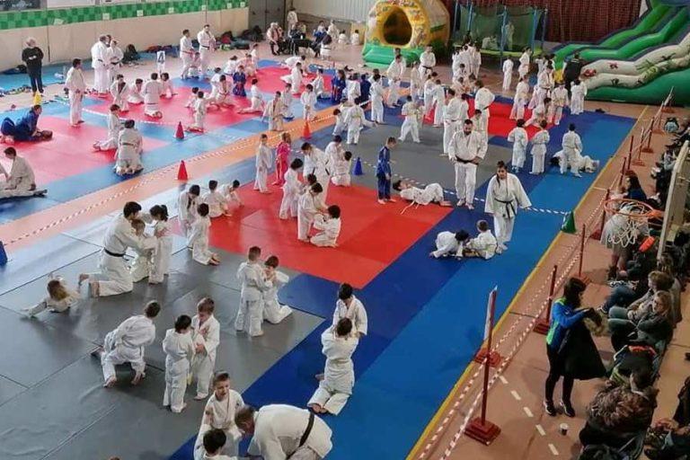 El Judo Nova Unió fa una competició virtual amb alumnes mentre durin les restriccions esportives