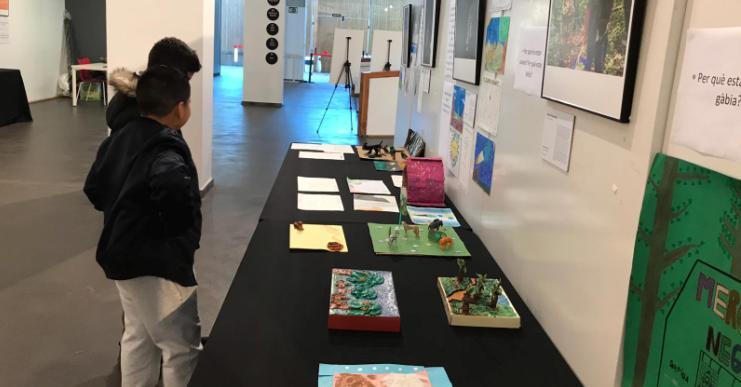 Inaugurada a la Casa de la Cultura l'exposició 'Imatges que inspiren', dels alumnes de 5è