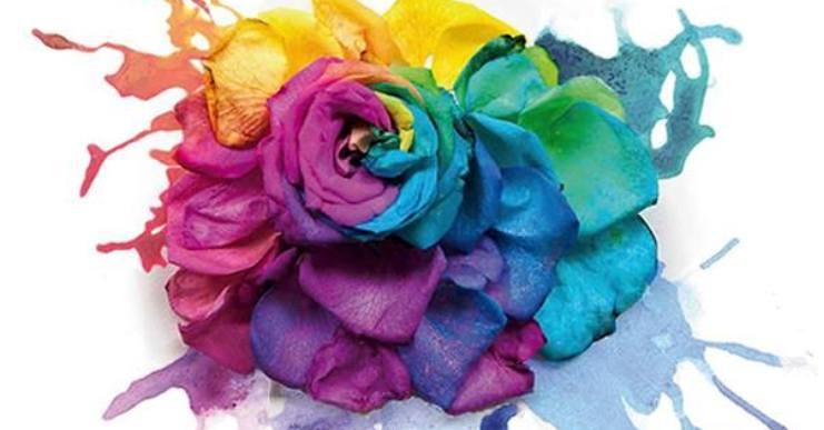 Diumenge se celebra l'onzena edició de la Festa de les Flors de les Alegries