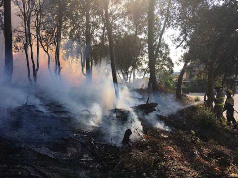 Cremen 600 metres quadrats del bosc proper a Cala Banys