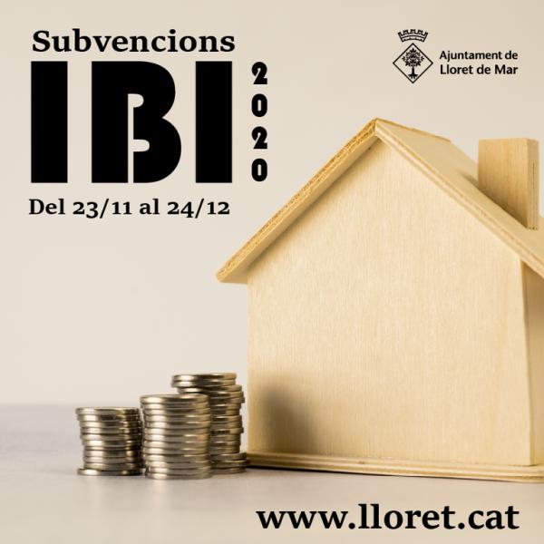 imatge IBI
