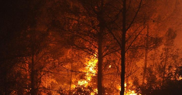 Les altes temperatures i la baixa humitat eleven el risc d'incendi