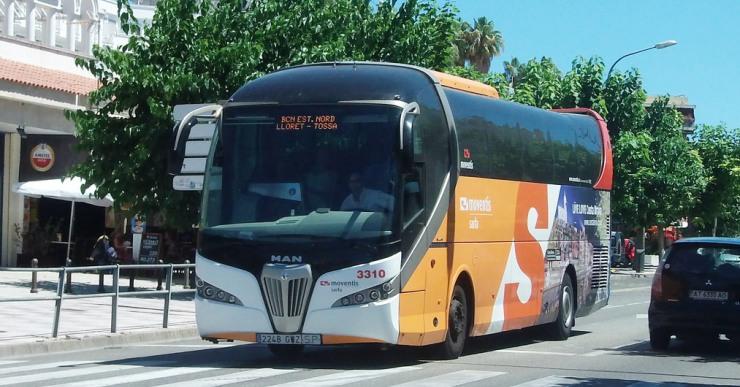 Sarfa Moventis ofereix un curs gratuït per treure's el carnet per conduir autobusos